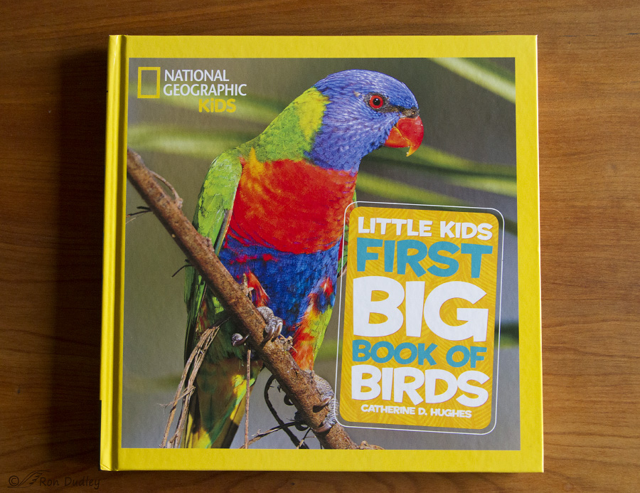 first big book of birds 5956 ron dudley